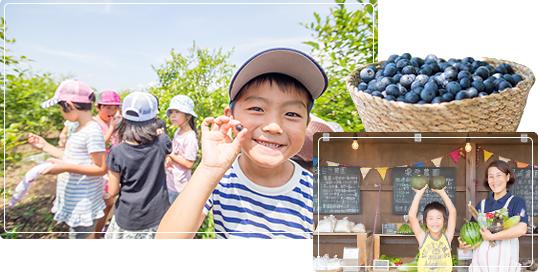 KIYANSE FARM(キヤンセファーム)の写真