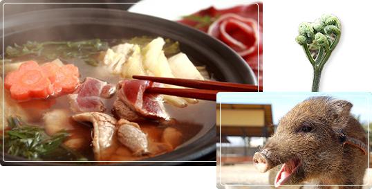 猪鍋の写真