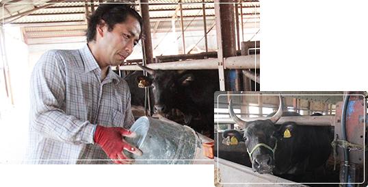 都城産宮崎牛の写真